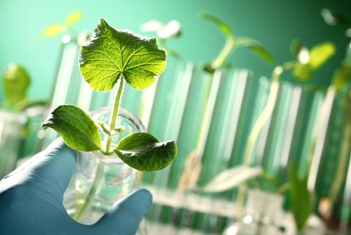 Mokslui ir biotechnologijoms